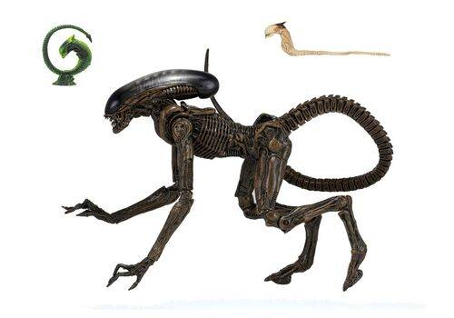 Figurka Obcy - Alien 3 Ultimate Dog Alien